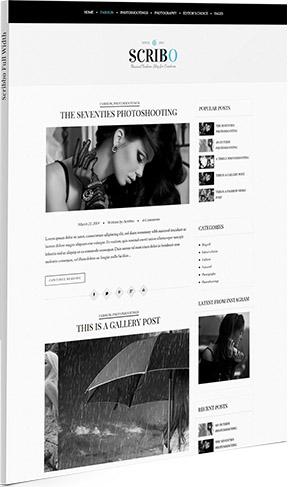 scribbo-wordpress-theme-layout-3