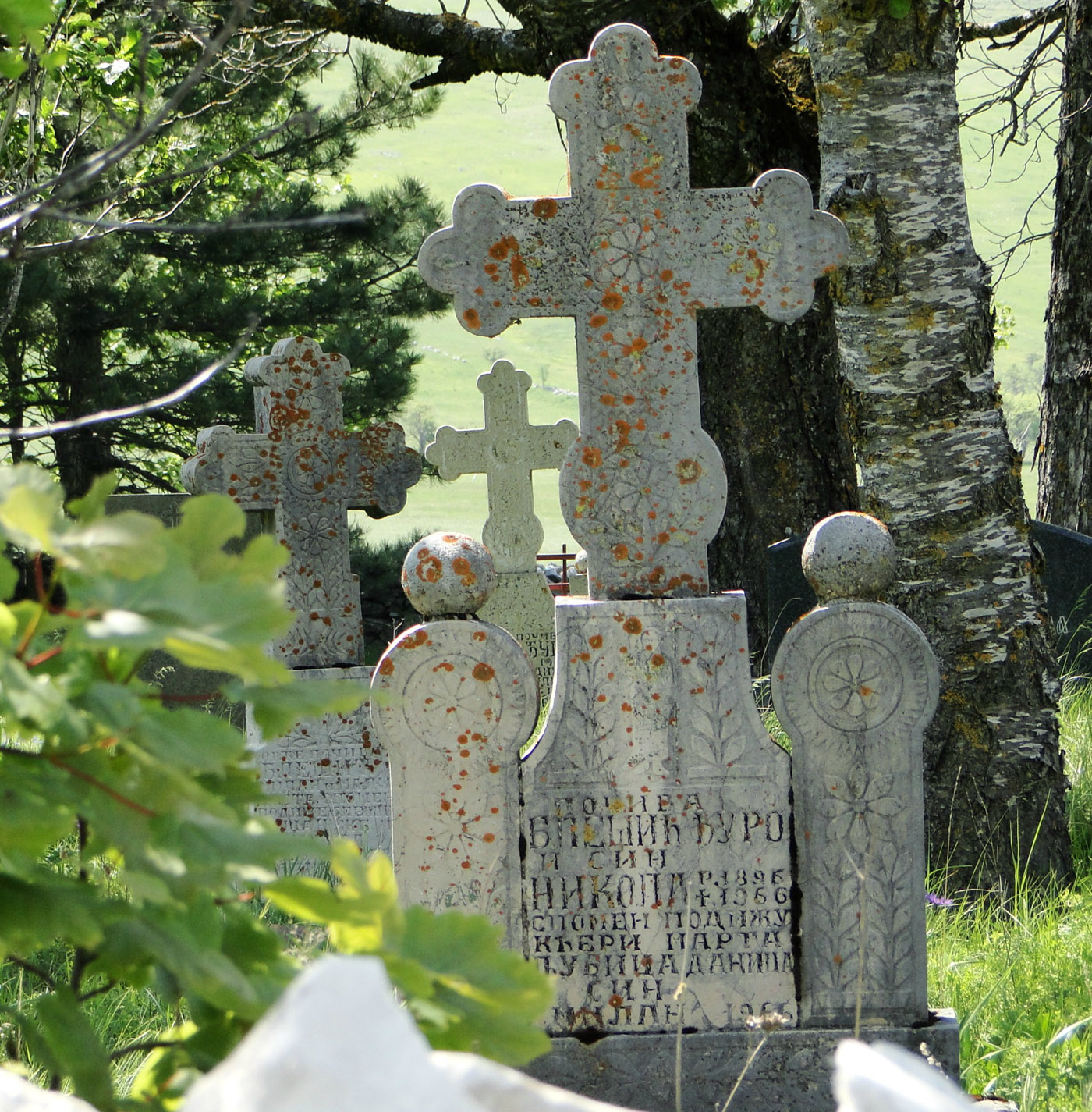 Daily Photo: Old Cemetery