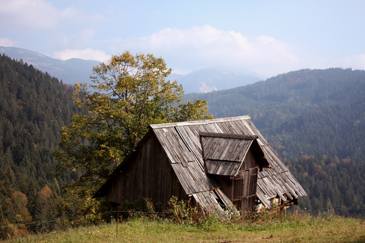 Abandoned sheppard cottage