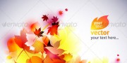 Vector autumn leaves background - abstract