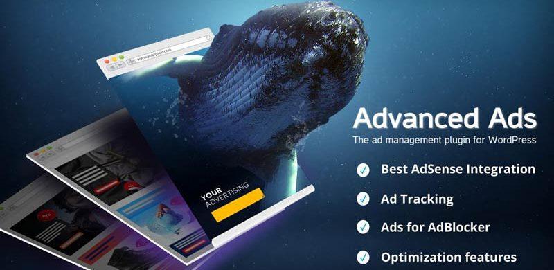 8 best wordpress advertising plugins