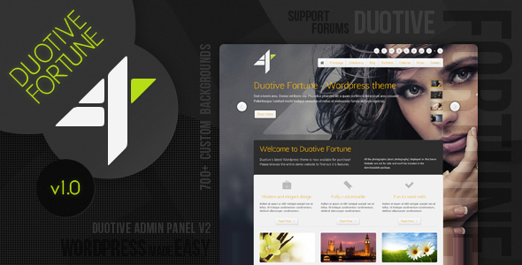 Duotive fortune premium Wordpress theme