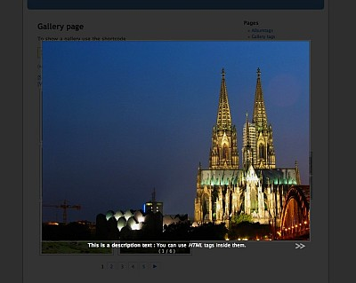 nextgen wordpress gallery