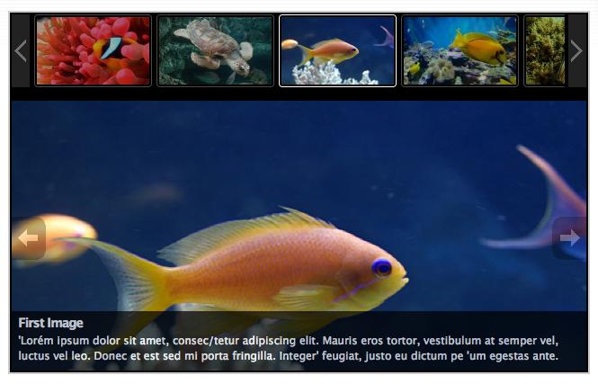 slideshow gallery plugin