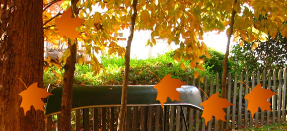 css3-falling-leaves-effect