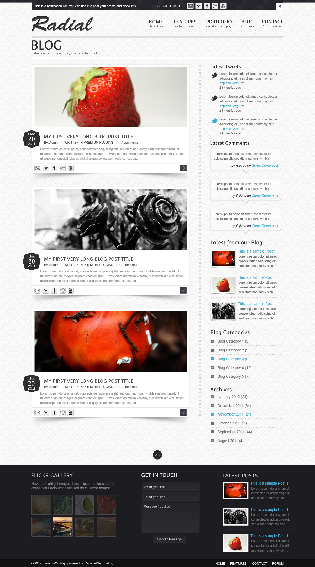 radial-website-template-blog-psd-preview.jpg