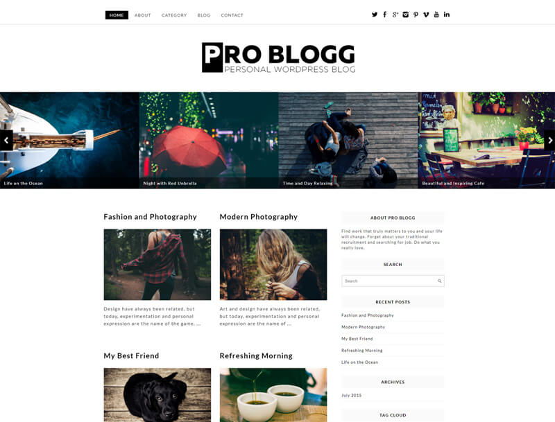pro blogg free wp theme