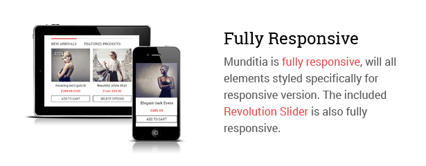 Udita - A Blog & Portfolio WordPress Theme