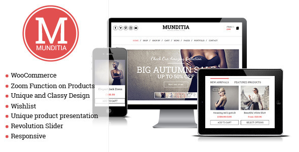ecommerces-themes3
