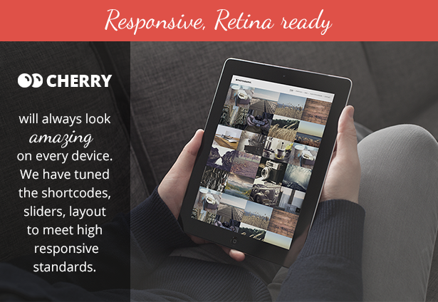 03_cherry-preview-description-slider-responsive