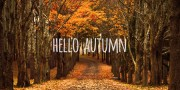 autumn-fb2