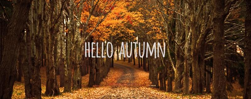 autumn Archives - PremiumCoding  PremiumCoding