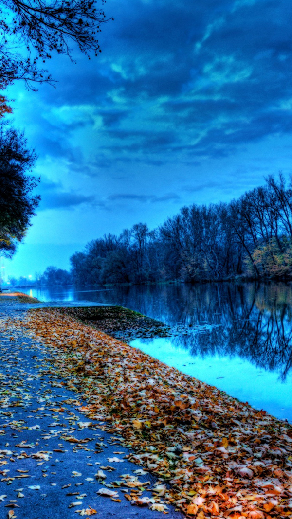 Autumn Lake Leaves iPhone 6 Wallpaper