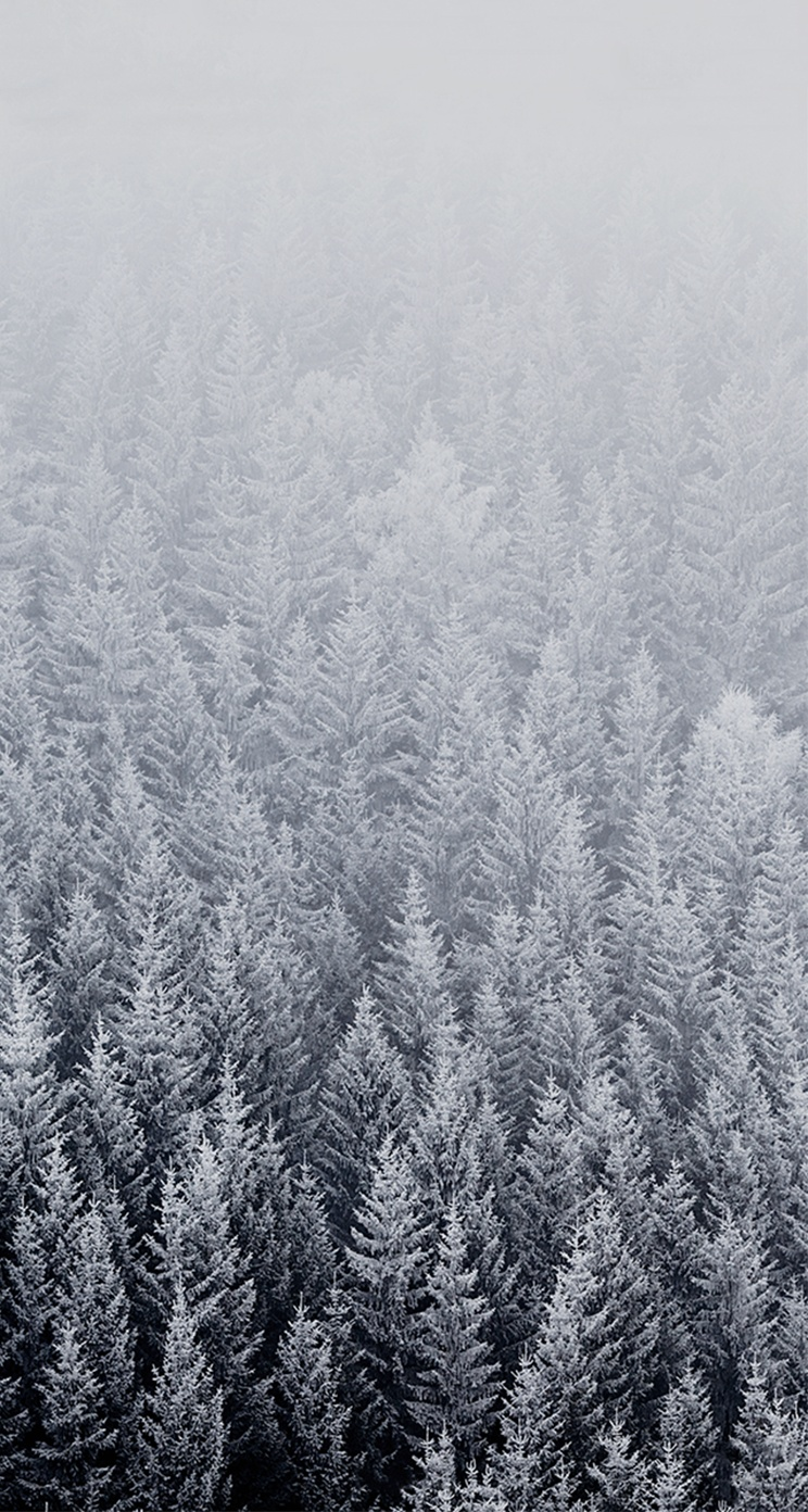 10 Free snowy iPhone wallpapers - PremiumCoding