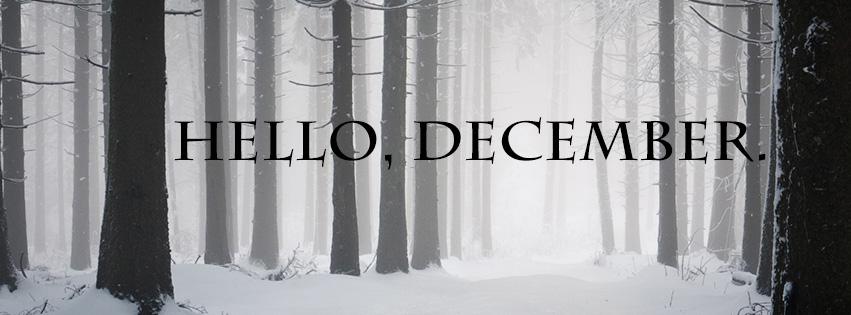 december-timeline5