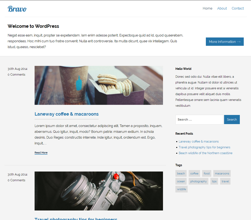 Bravo WordPress Theme