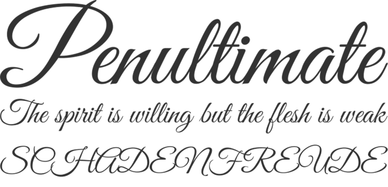 BEST FREE CALLIGRAPHIC TYPOGRAPHY