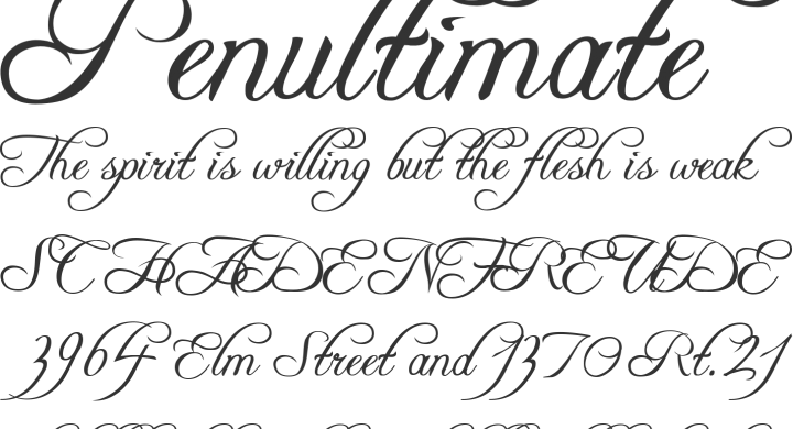 typography5