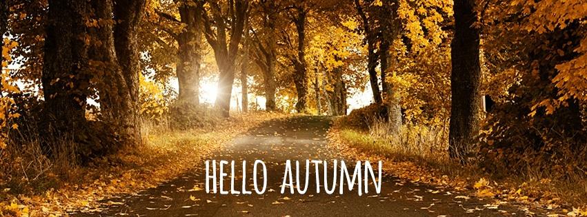 autumn-timeline3