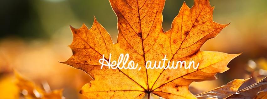 autumn-timeline4