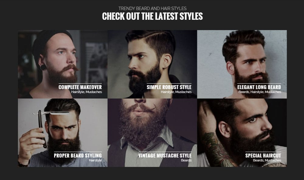 Barber Hair Salon WordPress Theme Styles