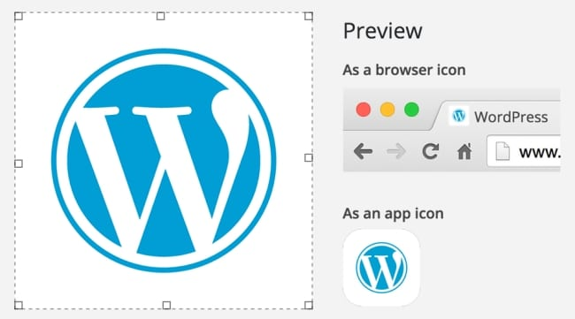 Site Icon Preview_