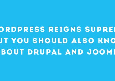 WordPress Reigns Supreme But You Should Also Know About Drupal and Joomla