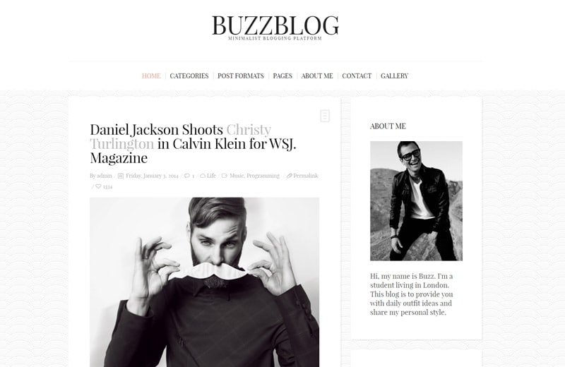 buzzblog-wordpress-blog-theme