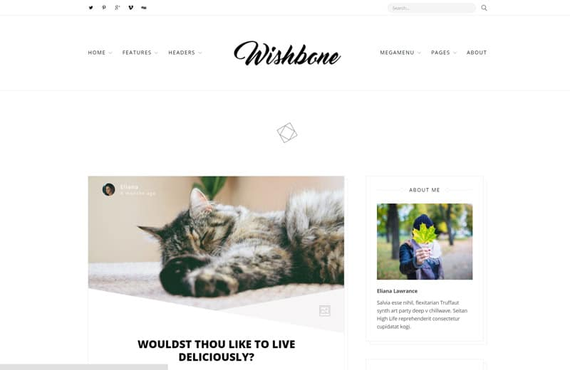 wishbone-wordpress-blog-theme