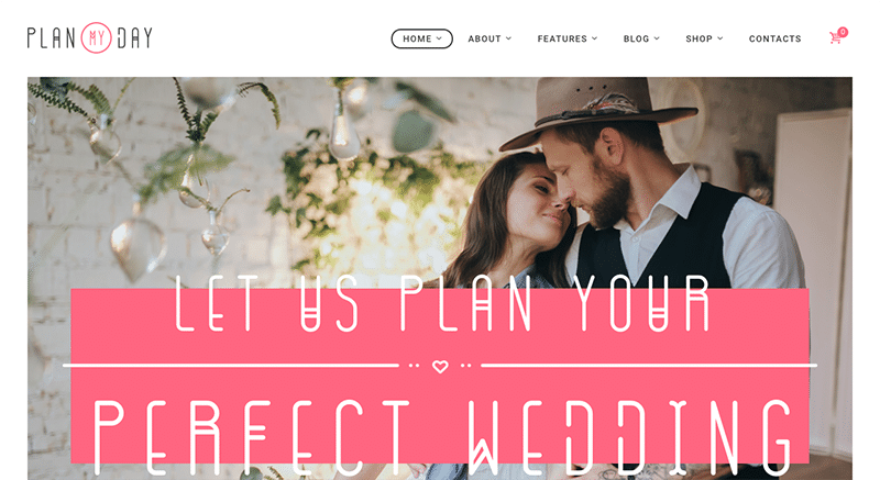 Tender WordPress Theme
