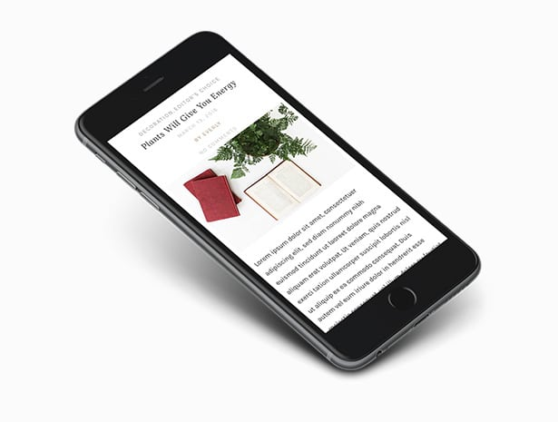 Responsive Design of Everly WordPress Blog Theme
