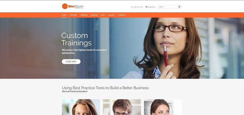 bierbaum multipurpose consulting agency wordpress theme