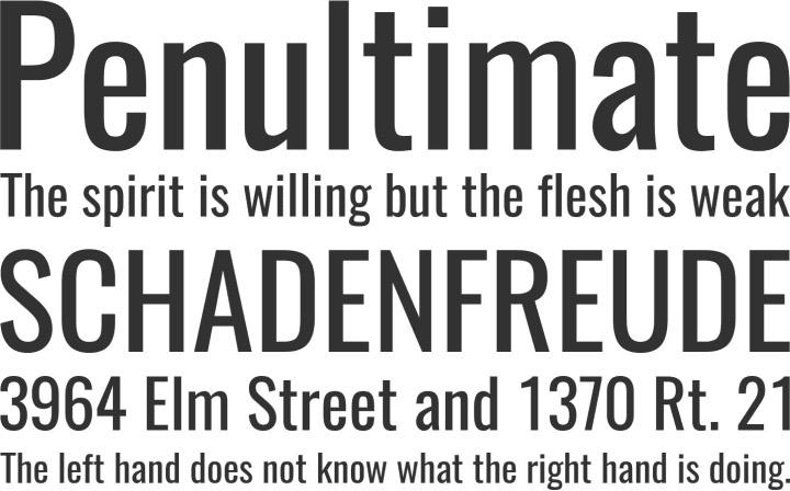 10 Most Popular Fonts In Web Design - PremiumCoding