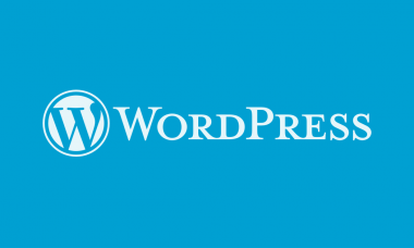 20 Good Reasons Why Startups Should Use WordPress For Website Building