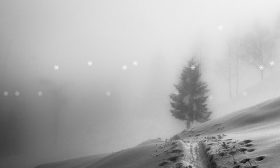 CSS3 Tricks: Falling Snow Animation with CSS only
