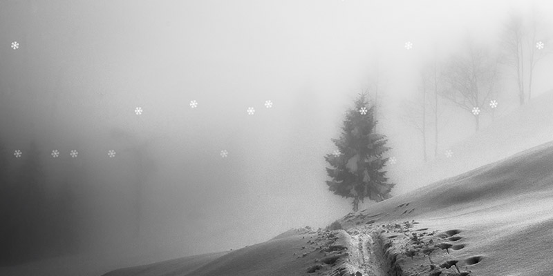 CSS Falling Snow Animation