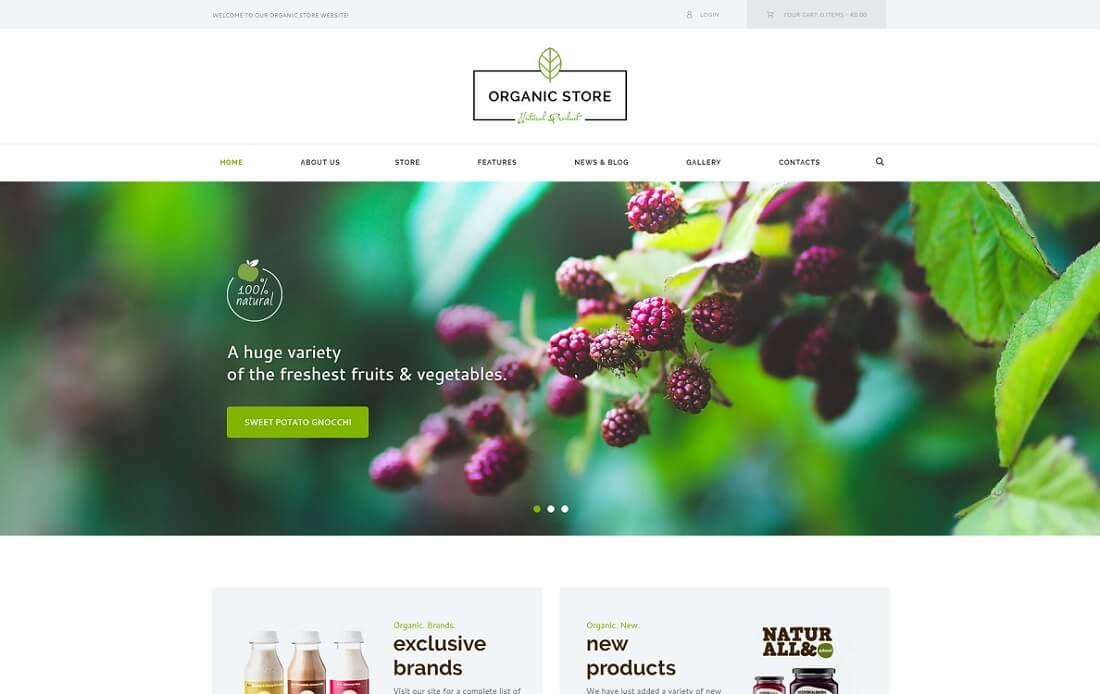 organic store wordpress theme