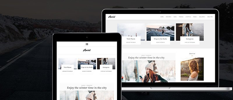 Anariel Free WordPress Blog Theme