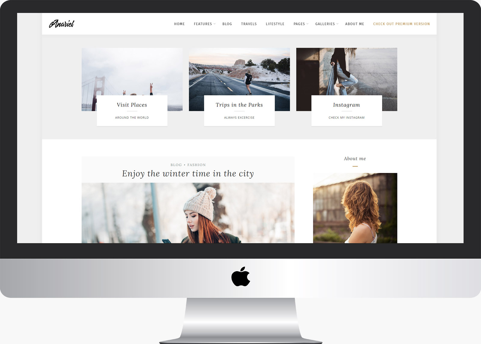 Anariel Lite: Free WordPress LifeStyle Blog