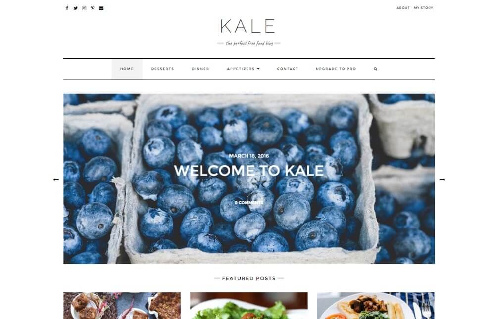 kale free food blog theme