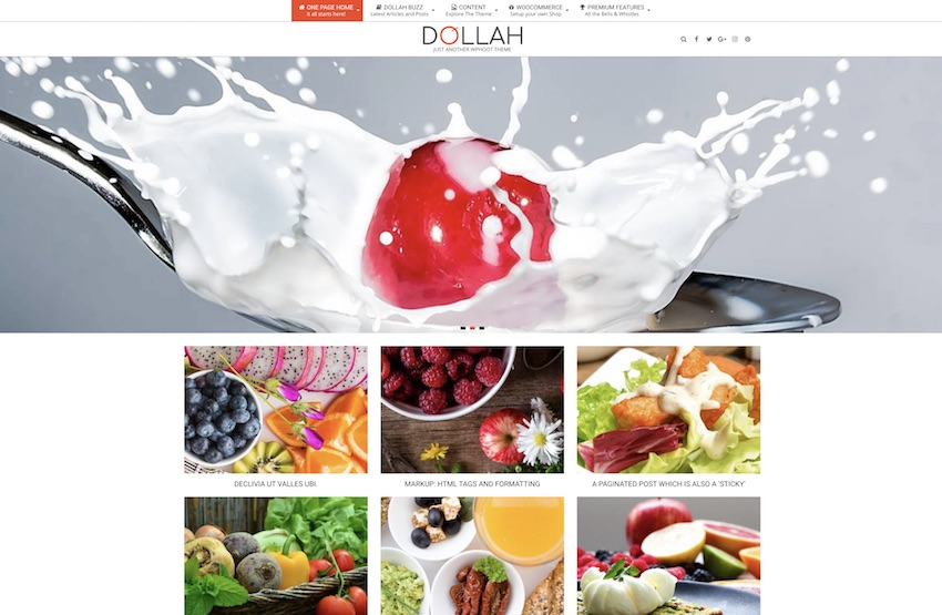 dollah wordpress photography themes