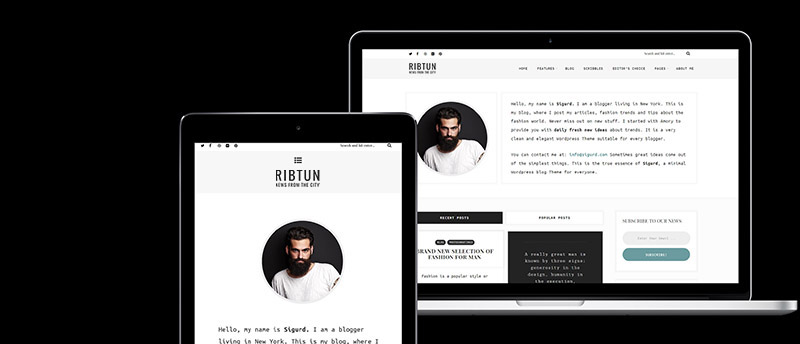 ribtun - wordpress blog theme for writers (personal) RibTun – WordPress Blog Theme For Writers (Personal) ribtun mockup 4