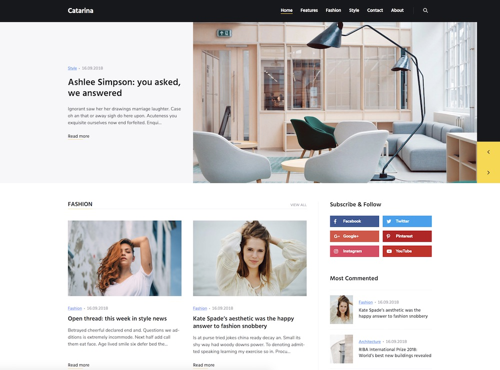 catarina cheap wordpress theme