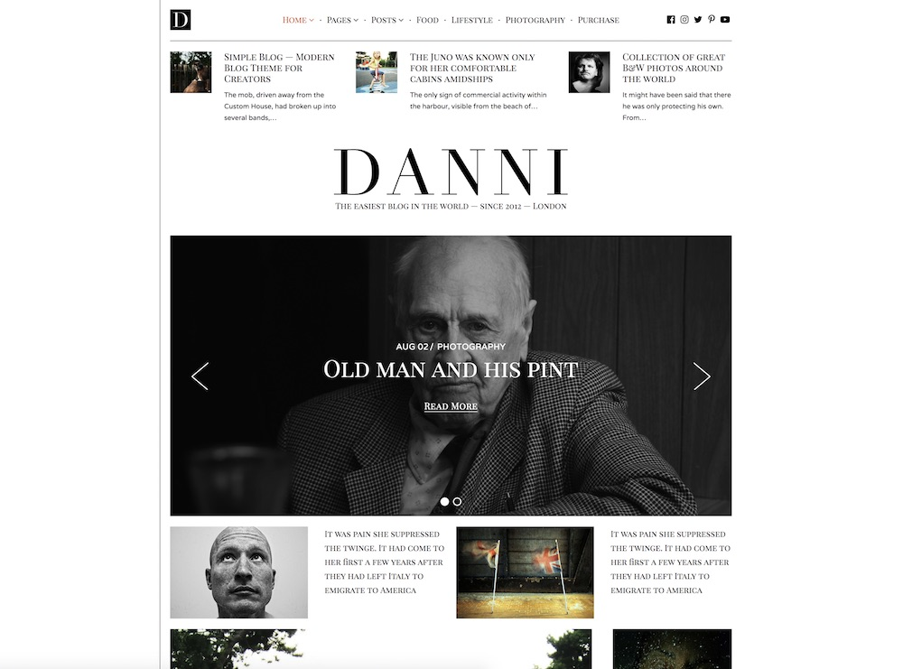 danni cheap wordpress theme