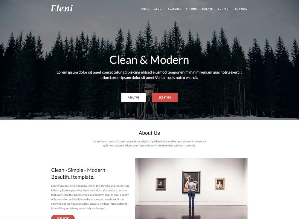 eleni cheap wordpress theme