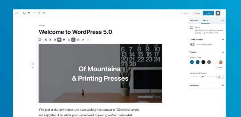 WordPress 5.0 Is The Biggest Update of 2018