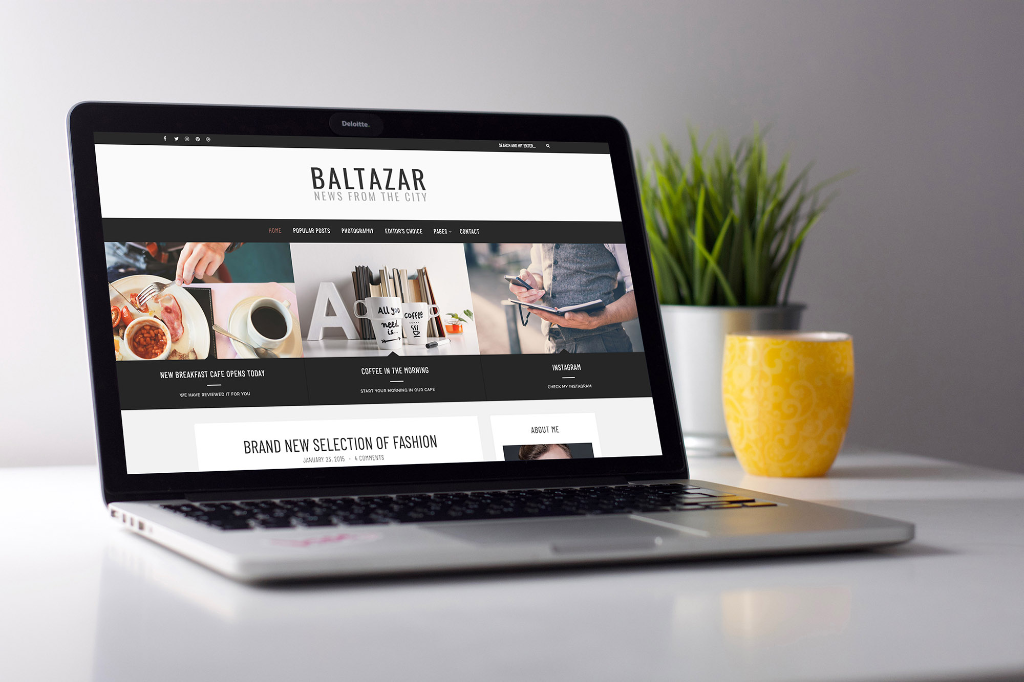 Home page of Baltazar