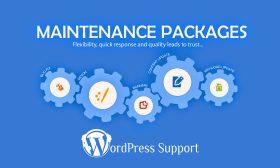 WordPress Personal Support & Maintenance