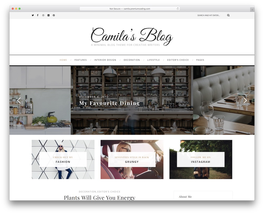 camila corporate blog theme