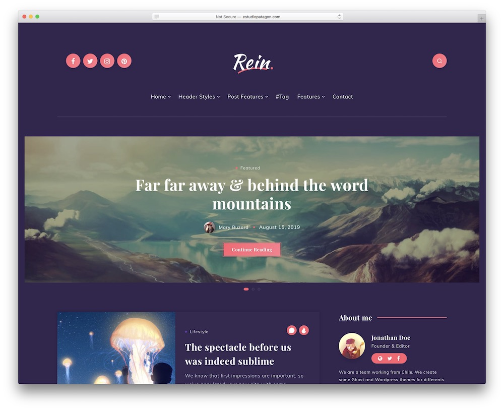 rein corporate blog theme